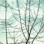 invierno en andromeda 150x150 - Book Pin up a Marta Tejero